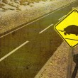 Stock Photo: Tortoise Crossing Yield Sign in Desert