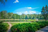 Beautiful lakeshore — Stock Photo