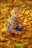 Girl sitting in the maple leaves — Stock Photo