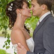 Young wedding couple kissing. Romantic portrait. — Stock Photo