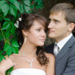 Bride and groom outdoors park closeup portrait — Stock Photo #38769735