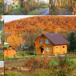 Autumn Collection - Stock Photo