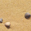 Seashells on the sand by the sea — Stock Photo #14158655