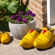 Traditional wooden shoes — Stock Photo