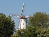 Windmill, — Stock Photo