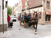 Horse Carriage in Bruges — Stock Photo