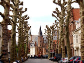 Alley of trees, the tower and houses of Bruges. — Stock Photo
