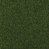 Perfect Grass — Stock Photo