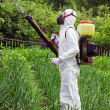 Man in full protective clothing spraying chemicals - Foto Stock