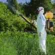 Stock Photo: Country farmer spraying insecticide
