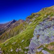 Landscape with mountain trail — Stock Photo #28098695
