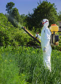 Country farmer spraying insecticide — Stock Photo