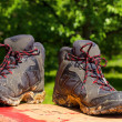 Stock Photo: Pair of muddy boots