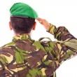 Stock Photo: Army soldier saluting