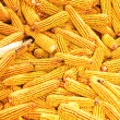 Stock Photo: Yellow ripe corn collected