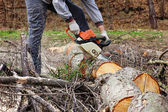 Man cutting trees using an electrical chainsaw  — Stock Photo