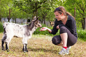 Portrait of a young woman playing  baby goat  — Stock Photo