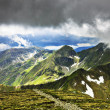 Beautiful summer landscape from Fagaras mountains — Stock Photo #51332163