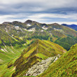 Beautiful summer landscape from Fagaras mountains — Stock Photo #51332311