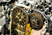 Timing chain. — Stock Photo