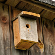 Bluebird Nesting Box - Stock Photo