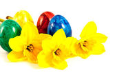 Daffodils and painted eggs — Stock Photo