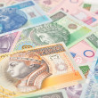 Polish paper money background. - Stock Photo