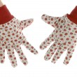 Gardening gloves - Stock Photo