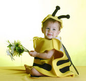 Baby dressed up like a bee — Stockfoto