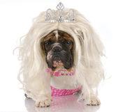 Ugly princess — Stock Photo