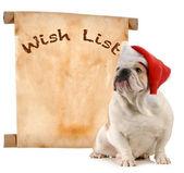 Pet wish list — Stock Photo