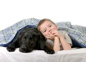 Boy and dog — Stock Photo