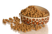 Bowl of dog kibble in a heart shaped dog dish isolated — Stock Photo