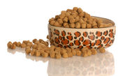 Bowl of dog kibble — Stock Photo