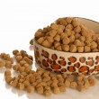 Stock Photo: Bowl of dog kibble in heart shaped dog dish