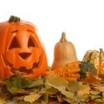 Halloween pumpkin — Stock Photo #24158931