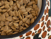 Dog dinner time - pet kibble set out in dog dish — Stock Photo