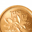 Close up details on maple leaf side of canadian one cent coin — Stock Photo