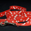 Red dog leash with paw prints on black background - Stock Photo