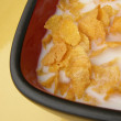 Corn flaked cereal in square bowl - Stock fotografie