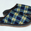 Mens plaid slippers isolated on white background — Stock Photo #24377879
