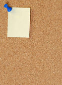 Cork board with thumb tack or push pin — Stock Photo