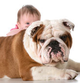 Baby with bulldog — Stock Photo