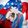 American dog — Stock Photo #44240681