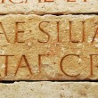 Ancient capitalis quadrata letters — Stock Photo