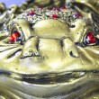 Feng Shui money toad — Stock Photo