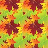 Esdoorn bladeren patroon verloop — Stockvector