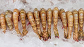 The shrimp for cooking. — Foto Stock