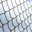 Cage design background. — Stockfoto #32170617