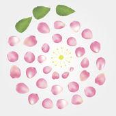 Composition de pétales de rose — Vecteur
